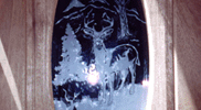 Sandblasted and Etched Glass 03