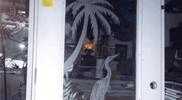 Sandblasted and Etched Glass 10